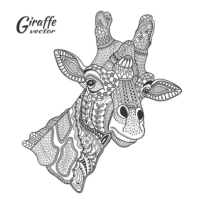 Hand drawn giraffe, doodle pattern. Coloring page