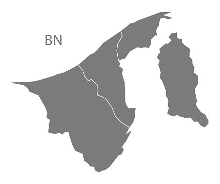 Brunei districts Map grey