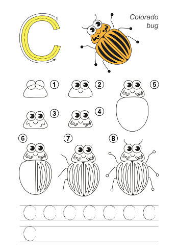 Drawing tutorial. Game for letter C. Colorado Potato Beetle.