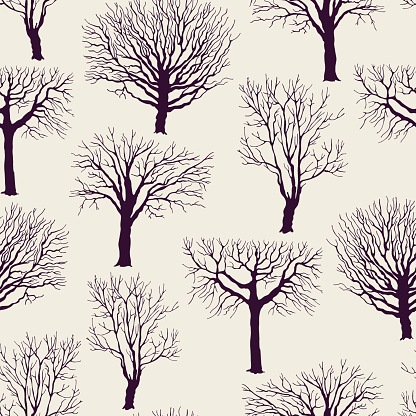 pattern with old trees