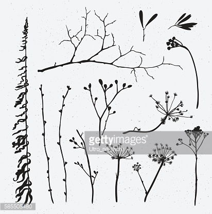 Vector set of silhouettes of flowers and grass.