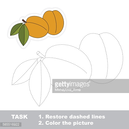 Apricot to be traced. Vector trace game.