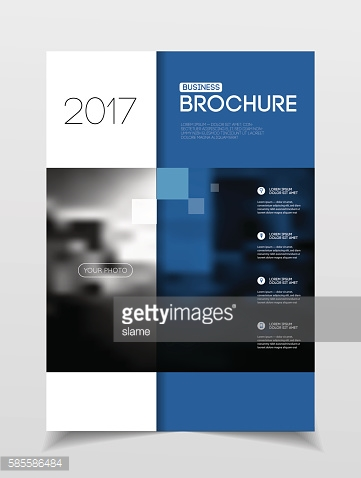 Business Brochure design. Annual report vector illustration temp