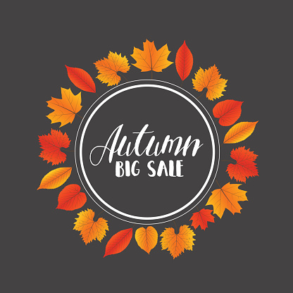 Autumn Sales Banner With Colorful Leaves. Vector