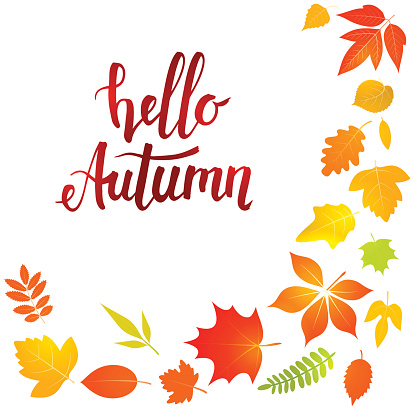 Hello autumn lettering with yellow leaves