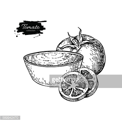 Tomato sauce Drawing. Vector isolated illustration with bowl ful