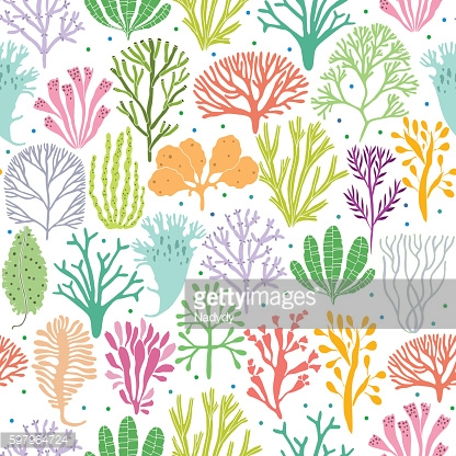 Hand drawn seaweed, coral seamless pattern. Sea plants background. Vector