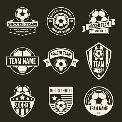 Set of vector logotypes elements, labels, badges and silhouettes for