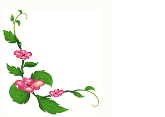 Pattern of flowers and leaves isolated.