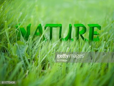 Nature words on green grass ground
