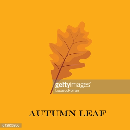 autumn leaves isolated on yellow background. simple cartoon flat style