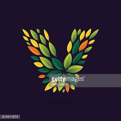 V letter icon formed by green and autumn leaves.