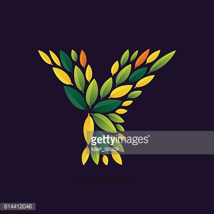 Y letter icon formed by green and autumn leaves.