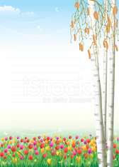 Empty paper with tulips on background