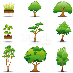Icon Set, trees and plants