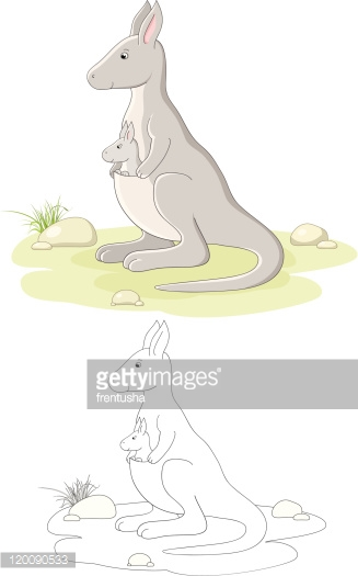 Vector family of kangaroo