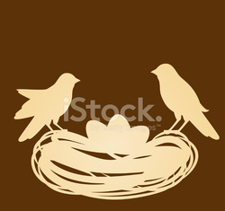 Birds in nest with eggs. Easter vector