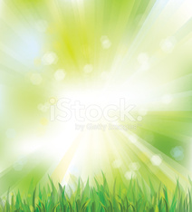 Vector of sky background with grass.