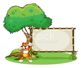 Tiger and the wooden frame