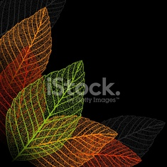 Skeleton leaf background.