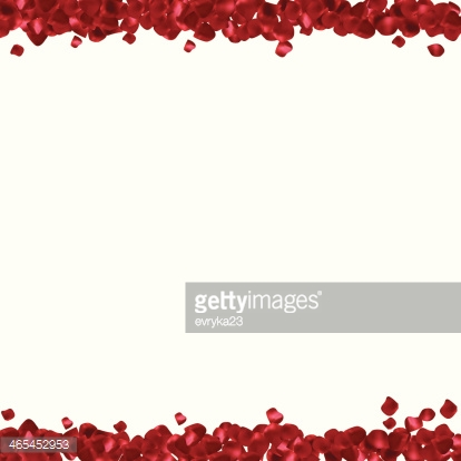 Red petals on a white background. Abstract frame