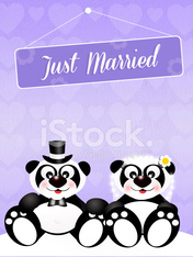 Wedding of panda