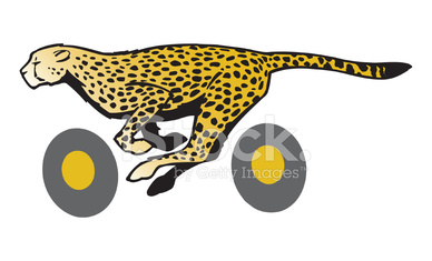 Cheetah Wheels C