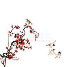 plum bloom and animal