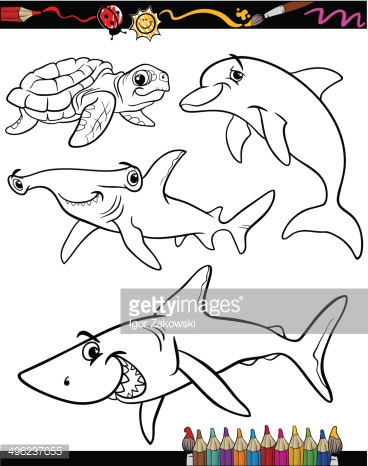 Sea Life Animals Cartoon Coloring Book stock photos - VectorHQ.com
