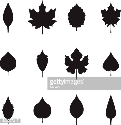 Leaves silhouette icons set