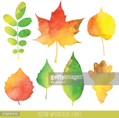 Vector watercolor autumn leaves