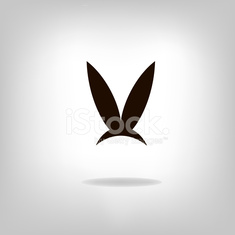 Image of an rabbit on white background