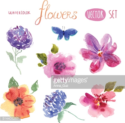 Floral watercolor set vector