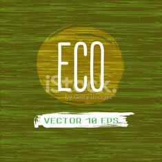 Wood Texture. Eco Organic detailed textured Tree. Vector 10 EPS