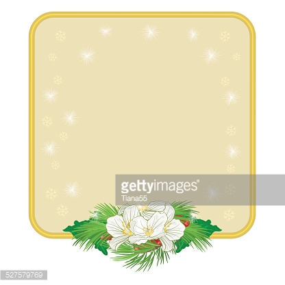Christmas decoration frame with white flowers and holly vector