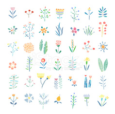 Hand Drawn vintage floral elements. Flowers, leaves, branches, b