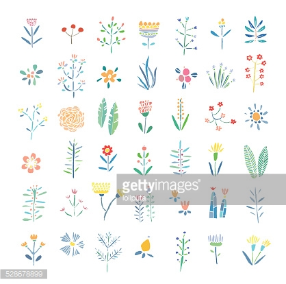 Hand Drawn vintage floral elements. Flowers, leaves, branches, berries. Isolated.