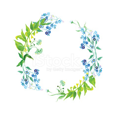 Forget-me-not and herb watercolor round vector frame