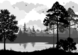 Landscape, Trees, River and Birds Silhouette