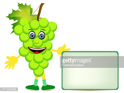 grape illustration with banner