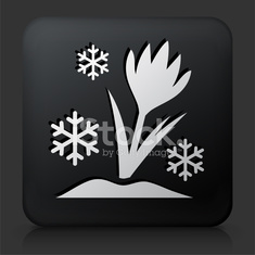 Black Square Button with Flower & Snowflake