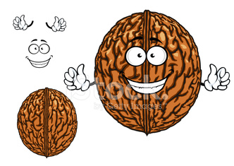 Smiling happy whole walnut character