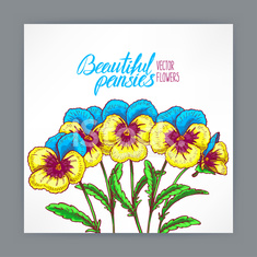 greeting card with pretty pansies