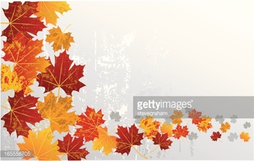 Flowing Autumn Leaves