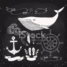 Cool vector sea related design elements