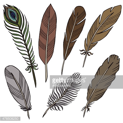 vector silhouette of different feathers