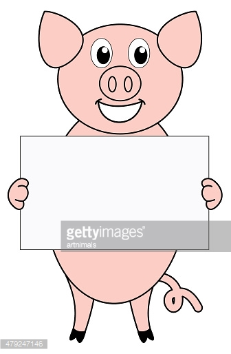 pig with a placard