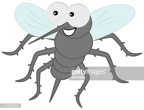 sting mosquito with hair