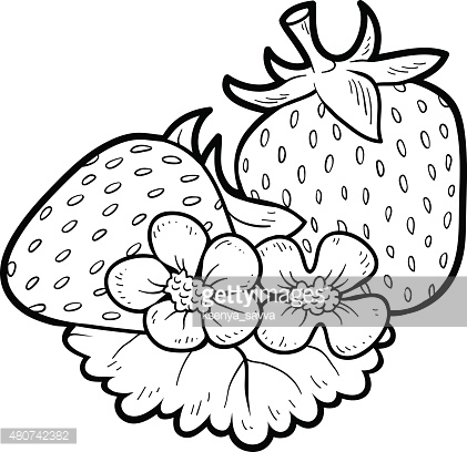 Coloring book: fruits and vegetables (strawberry)