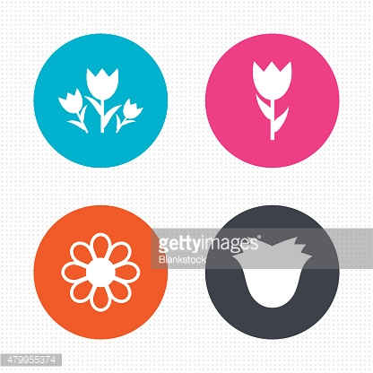 Flowers icons. Bouquet of roses symbol